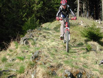 Mountainbiken Harz